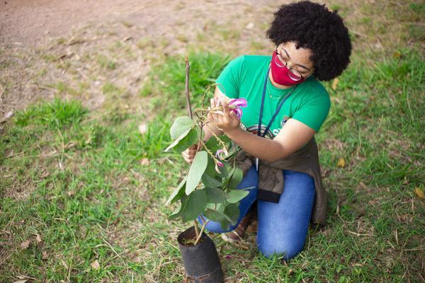 Cotia tem programação especial na Semana do Meio Ambiente